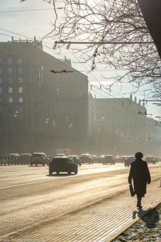 Туманный ноябрь
