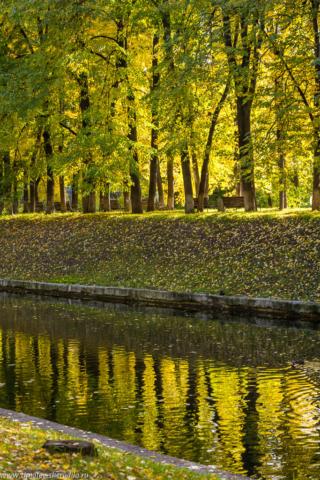Эльфийская осень